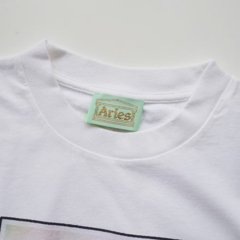 aries-stonehrngrpolaroid