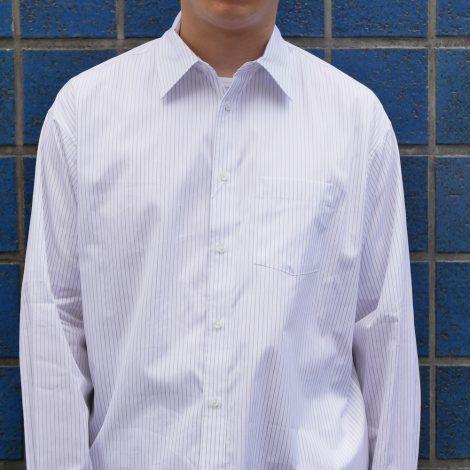 allege-stripestandardshirts