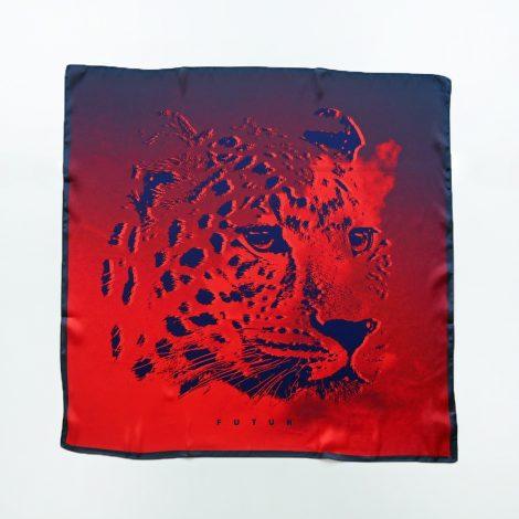 futur-leopardcloudfutursquare